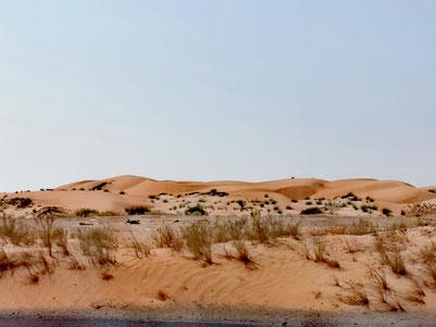 Die Stadt Dubai, war ursprünglich eine reine Wüstenlandschaft