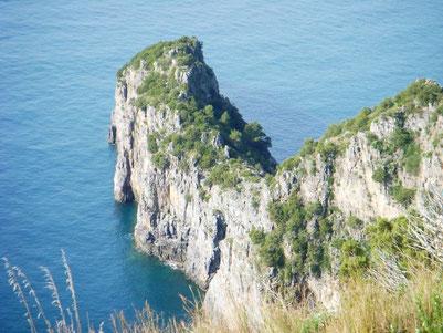 Cala Fortuna ist besonders reich an Blaufisch. Hier bauen sich viele Seemöwen ihre Nistplӓtze.