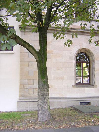 Fassade des Umweltministeriums Hannover in Sandsteinoptik