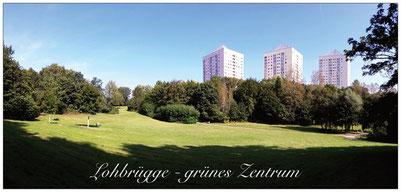 A4 Lohbrügge grünes Zentrum 210 x 99