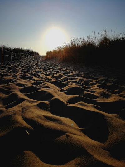 Der Weg zum Strand Le Pin Sec in Frankreich. Zahlreiche Surfer, Surfschulen/ Surfcamps tummeln sich dort am Strand, da es dort die perfekten Wellen für Anfänger gibt.