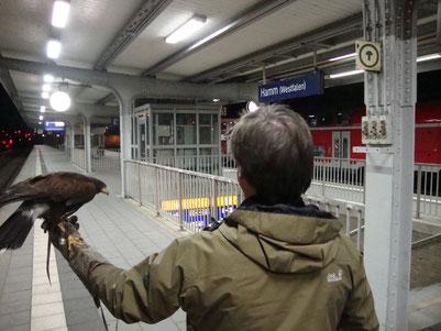Projekt Bahnhof Hamm