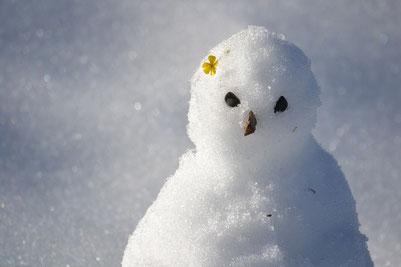 Ist auf Eskimos nicht gut zu sprechen: Schlecht gelaunter Schneemann.