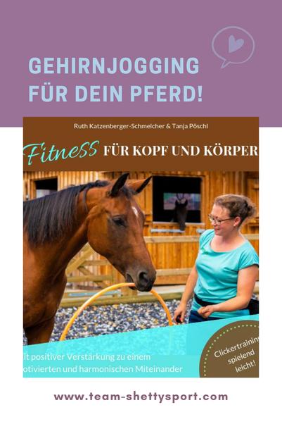 Gehirnjogging und Muskeltraining für Pferde! Lern- und Konzentrationsspiele für Pferde auf kleinstem Raum trainieren.