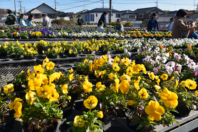花摘みの丘。同市は東京都の支援を受けて実施した「都市と農業が共生するまちづくり事業」の一環として、市民が農園にふれる機会の整備を行っている。