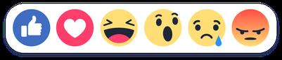 facebook-lerepr