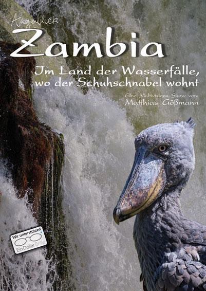Matthias Gößmann:  Plakat zu Augenblick-Zambia