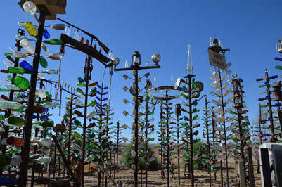 Elmar Longs Bottle Tree Ranch