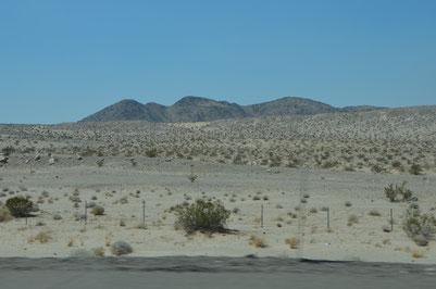 Fahrt durch die Mojave-Wüste