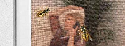 Bilder zu Wespen auf dem Schutzgitter Plisseetür