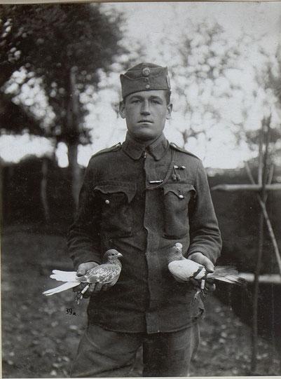 Soldat vom II. Bataillon Infanterieregiment Nr. 1 mit Brieftauben