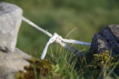 Steine verbunden mit einem Band, Gras, Irland