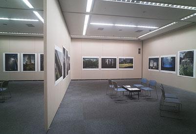 吉祥寺美術館市民ギャラリー展示風景