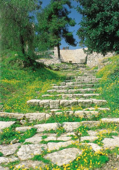 そして、賛美の歌を歌ってから、みなオリーブ山へ出かけて行った。ーマタイによる福音書 26-30