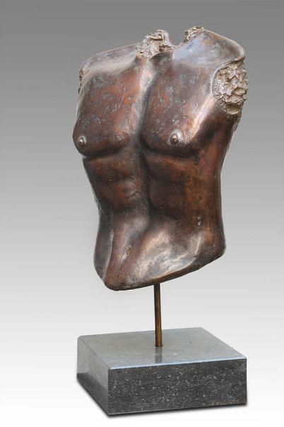 Male torso by Elise Coenen