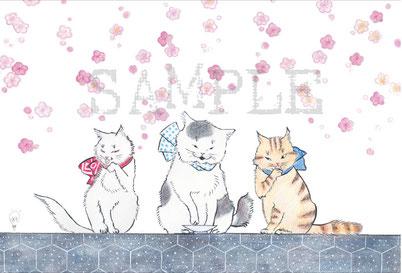 猫舞伎ポストカード『三匹吉三』