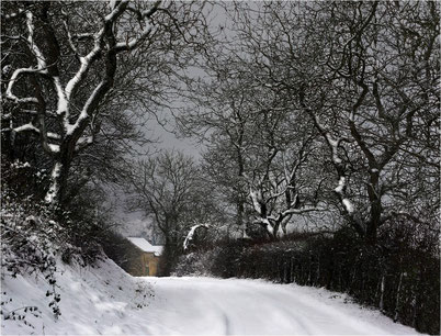 Blanc de neige