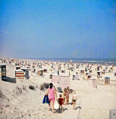 in den 1960/70igern gab es bis zu 2.800 Strandzele am Juister Strand....