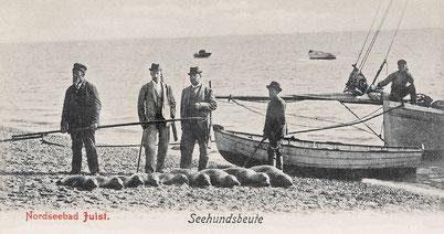 Gut zahlende Klientel ging um 1900, auch auf Juist, zur geführten Seehundsjagd..