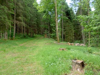 Trekkingplatz Gutellbach