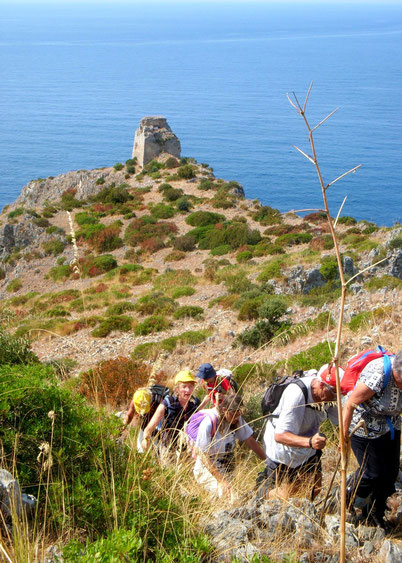 Leichte bis mittelschwere Touren mit Naturbeobachtungen, Auf- und Abstiege von 50 - 400 Meter Höhenunterschied.