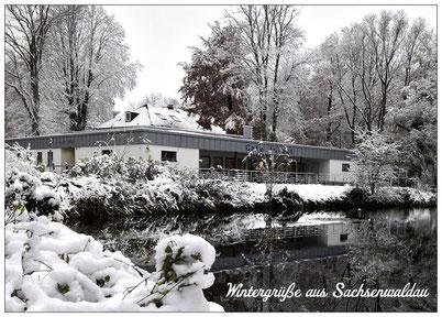 224 Sachsenwaldau Winter