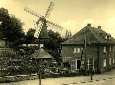 17 Chrysanderstr Mühle H