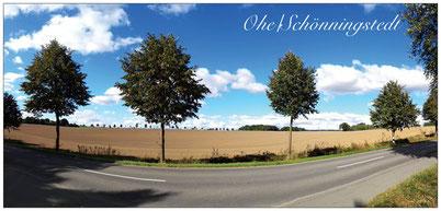 A6 Ohe Schönningstedt
