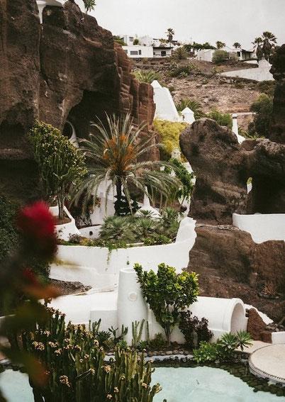необычные пальмы, кактусы и террасы на острове Лансароте