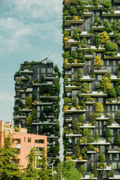 необычное место в Милане - вертикальный лес