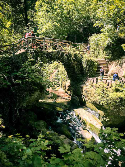 Mullerthal hiking trip in Luxembourg