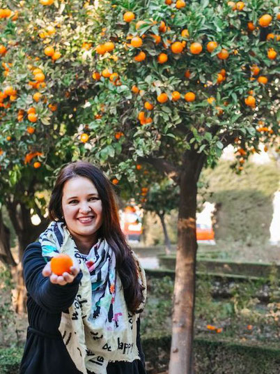 December and January are the best months to go to Malaga to eat mandarines