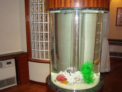 メンテナンス水槽(円柱)