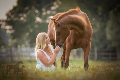 Reiterin, Pferd, Pferdefotografie, Fotografie Pia Rix, NRW, Aachen, Düren