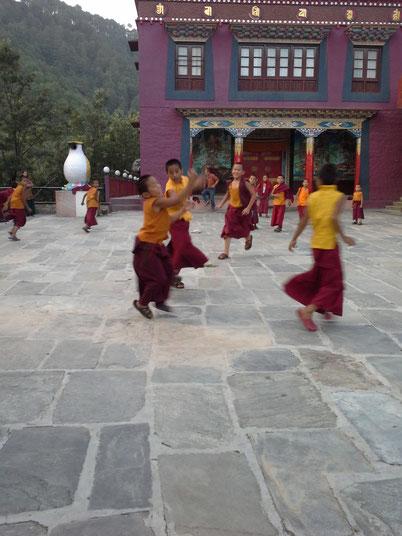 Mönche lieben Fußball -  in diesem Kloster in Rewalsar habe ich ein Zimmer für eine Woche gemietet...kaltes Wasser inklusive