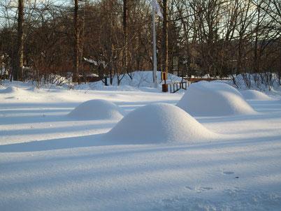植込みがふんわり雪の下