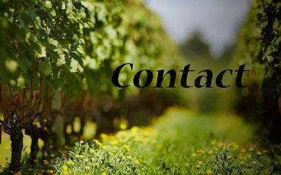 Contact VTG
