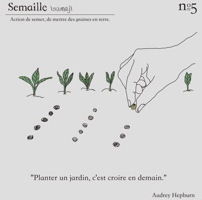 6. フランス語で種蒔き