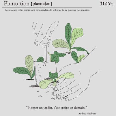 8. フランス語で植える