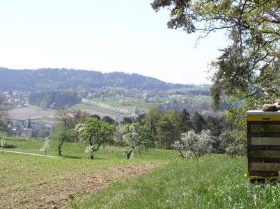 Blick vom Warschenhofergut Richtung Linzerberg