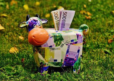 BSC Arcus Guntramsdorf Sparkuh mit Geld