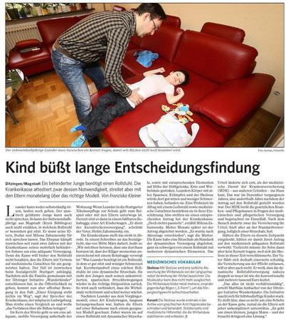 Artikel der Stuttgarter Zeitung vom 4.April 2013