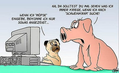 Hund Mops und Schwein bei Fachgesprächen - nicht nur in Südtirol