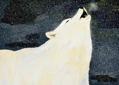 「ホッキョクオオカミ」那須どうぶつ王国では、2020年にホッキョクオオカミを公開し、国内で唯一の飼育・展示をしている。  ホッキョクオオカミは主にグリーンランドやその近郊の島、ユーラシア大陸の北極圏に生息しており、  その生態については、生息地の天候が厳しく、研究が困難であるため、未だ解明されていないことが多い。