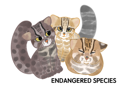 イリオモテヤマネコは沖縄県西表島の固有種であり、特別天然記念物。  イリオモテヤマネコよりも知名度は劣るが、対馬だけに生息するのがツシマヤマネコ。国の天然記念物に指定されている。  どちらも尾は先端まで太く、胴長で四肢は太く短い。耳の後ろに白い斑点があるのがヤマネコの特徴だ。  土地開発による生息地の減少や感染症、交通事故などにより野生の個体数が減少。交通事故での死亡数を減らすため、看板や道路標識を設置したり、保護センターでの研究を進めるなど保護活動が実施されている。