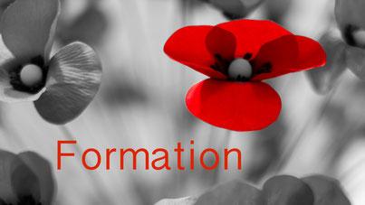 © Olivier Philippot Consulting - Conseil en stratégie digitale & clients, création de sites Internet, formation - Formation