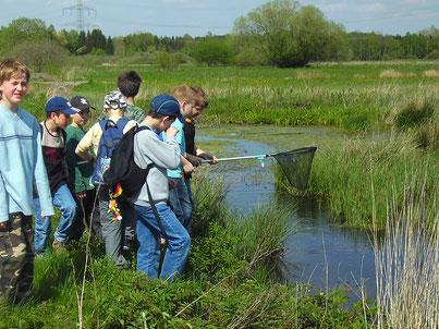 Umweltbildung Naturschutz Schüler Weiher Kescher Obenhausen LBV Neu-Ulm
