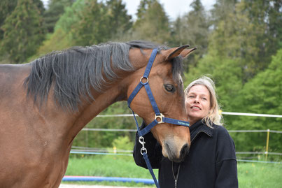 So geht Coaching mit Pferden_horse-feedback.ch