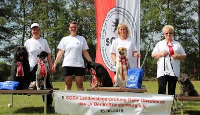 Foto: v.l. Marion Wiebke, Andrea Arndt, Mandy Grebasch und Sonja Sage