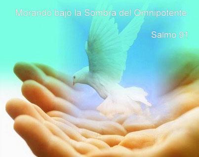 PALABRA VIVA - SALMO 91 - MORANDO BAJO LA SOMBRA DEL OMNIPOTENTE - PROSPERIDAD UNIVERSAL - www.prosperidaduniversal.org